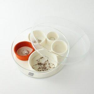 Schmuckaufbewahrung Schmuckschale 'luise' aus Glas mit Einsätzen aus Filz - matilda k. manufaktur