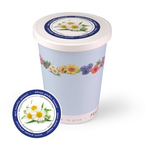 Blumen im Becher TO GROW - Gänseblümchen - MacFlowers