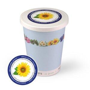 Blumen im Becher TO GROW - Sonnenblume - MacFlowers