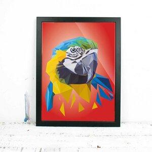 Papagei, Fine Art Print - Printe