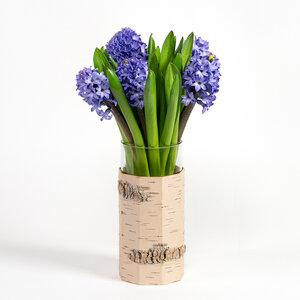 Vase / Blumenvase aus sibirischer Birkenrinde mit Glaseinsatz - MOYA Birch Bark
