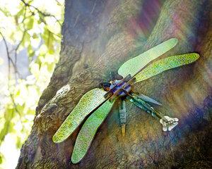 Totem Dragonfly - Kidsonroof