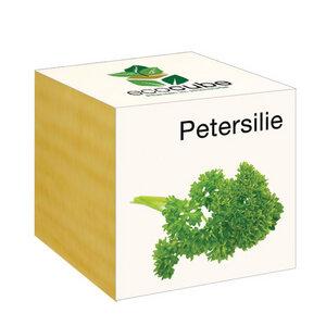 Petersilie im Holzwürfel - 'Ecocube' - EcoCube