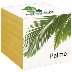 "Palme im Holzwürfel - ""Ecocube"" - EcoCube"