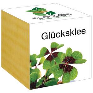 """Glücksklee im Holzwürfel - """"Ecocube"""" - EcoCube"""