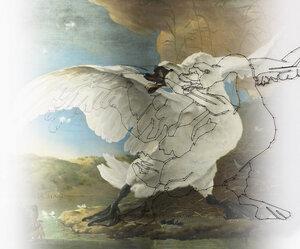 Wanddekoration 'Masterpieces Birds' - Mo man tai