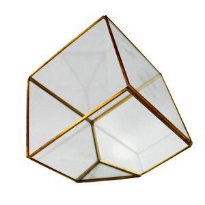 Quadratische Gold Terrarium - Mitienda Shop
