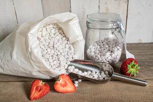 Denttabs Zahnputztabletten lose Strawberry ohne Flourid - DENTTABS®
