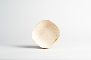 25 Leef-Teller aus Palmblatt - 10cm x 10cm x 1cm  - Leef