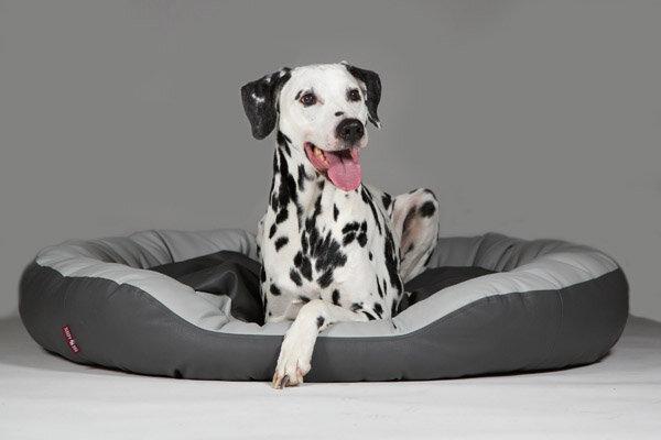 sleepy dog hundebett donut stone avocadostore. Black Bedroom Furniture Sets. Home Design Ideas