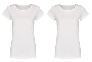 Basic Bio T-Shirt (ladies) Doublepack - Brandless