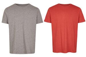 Basic Bio T-Shirt (men) Doublepack - Brandless