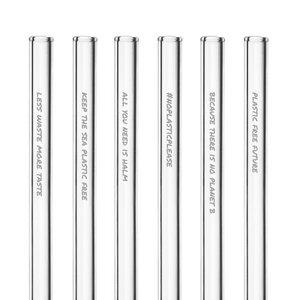 HALM Glasstrohhalme Trinkhalme mit gravierten Motiven PLASTIC FREE FUTURE EDITION 6x 20 cm (gerade) + Reinigungsbürste - HALM