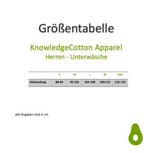 Underwear MAPLE 2Pack Blau Grau - KnowledgeCotton Apparel