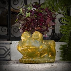 Blumentopf aus Ton Frosch - Mitienda Shop