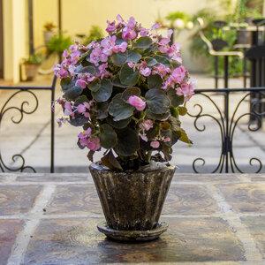 Blumentopf aus Ton mit Teller Copa - Mitienda Shop