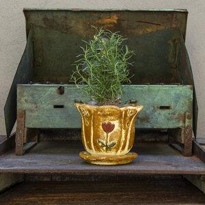 Blumentopf aus Ton mit Teller Blume klein - Mitienda Shop