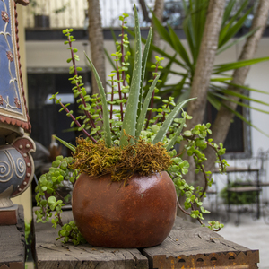 Blumentopf aus Ton, Bule Chico - Mitienda Shop