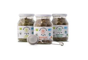 KollektivTee Starterset - 3x Bio-Tee im Mehrwegglas - KollektivTee