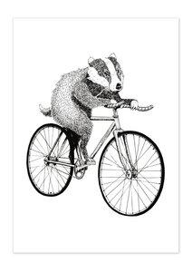 Poster Bike Badger matt - GreenBomb