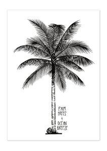 Poster Lifestyle Palm Tree matt - GreenBomb
