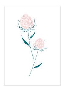 Poster Plants Thistle matt - GreenBomb