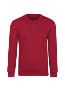 Sweatshirt aus Biobaumwolle - Trigema