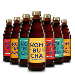 Kombucha 12er Probiermix, 4 Sorten in 330 ml Flaschen - Fairment