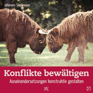 Konflikte bewältigen. Auseinandersetzungen konstruktiv gestalten. Johannes Stockmayer - Down to Earth