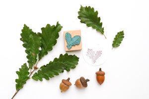 Stempel Laub Blätter, verschiedene Motive Buchenholz - STUDIO KARAMELO