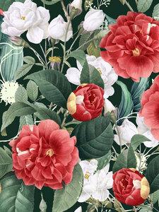 Botanical Wonder - Poster von Uma Gokhale - Photocircle