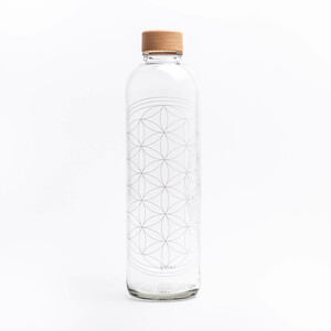 Carry Bottles Trinkflasche aus Glas 1.0l verschiedene Designs - Carry Bottles