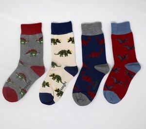 4er Set Kinder Socken Dino - Extinct Kids Sock Box - Thought