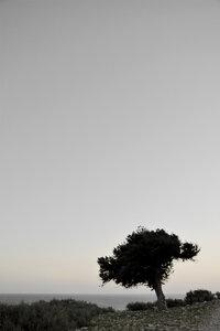 Calm View - Poster von Studio Na.hili - Photocircle