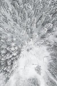 Calm Winter - Poster von Studio Na.hili - Photocircle