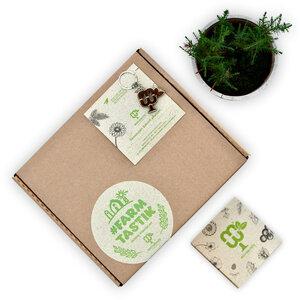 #FARMTASTIK-Starter Kit (3er Gemüse-Pflanzset) - meinwoody