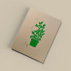 Pflanze I – Kunstdruck DIN A5 - Ballenito