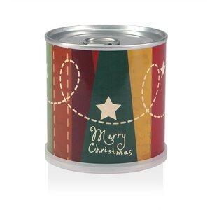 Weihnachtsbaum in der Dose - nostalgische Sterne von MacFlowers - MacFlowers