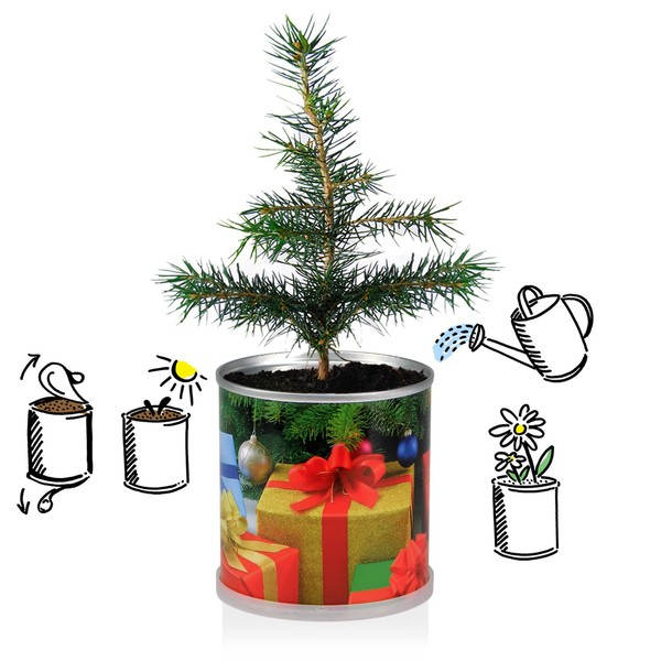 Weihnachtsbaum Comic.Macflowers Weihnachtsbaum Set Comic 4x Weihnachtsbaum Gemischt Von Macflowers Avocadostore