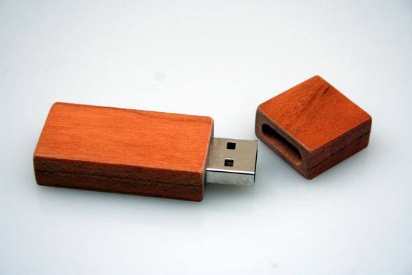 Vireo - USB Stick aus Holz | Avocadostore