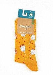 """GOTS zertifizierte Biobaumwolle Socken mit """"Besen Print"""" - VNS Organic Socks"""