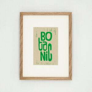 Botanic – Kunstdruck mit Echtholzrahmen - Ballenito
