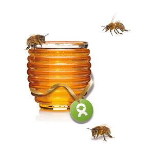 Honigbienen - OxfamUnverpackt