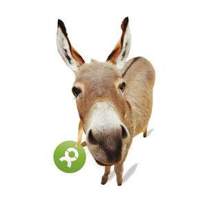 Esel - OxfamUnverpackt