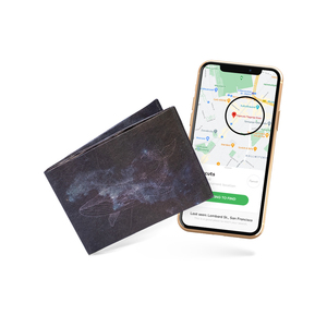 Smart Wallets - Galactic Whale - paprcuts