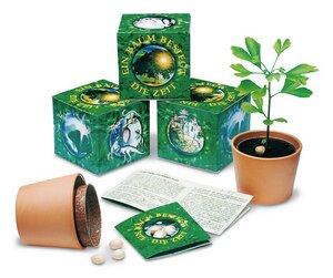 Ginkgobaum-Saatset - Extragoods