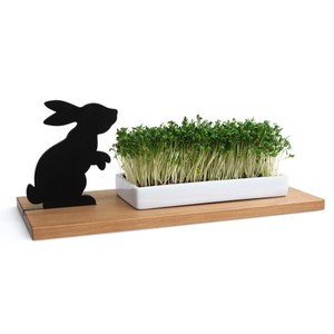 KRESSESCHALE - smart´n´green - Hase - Side by Side