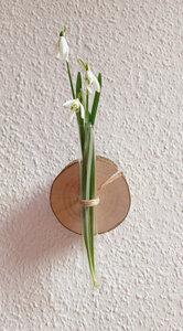 kleine Baumscheibe mit Reagenzglas-Vase - b.y.r.d.