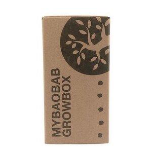 Baobab Samen - Growbox - Lebensbaum zum Selber pflanzen - Maishameanslife