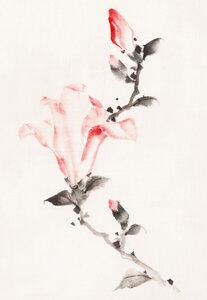 Large Pink Blossom on a Stem by Katsushika Hokusai - Poster von Japanese Vintage Art - Photocircle